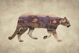 Arizona Mountain Lion Kunstdrucke von  Color Me Happy
