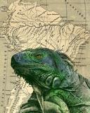 Brazilian Iguana Poster von  Take Me Away