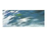 Sea Spray Plakater av Margaret Juul