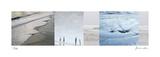 JuxtaShore 4 Limitierte Auflage von Florence Delva