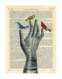 Bird in the Hand Prints by Marion Mcconaghie