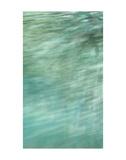 Lake Trail Edge Posters av Margaret Juul