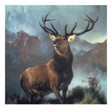 Monarch Of The Glen Limited Edition by Edwin Landseer