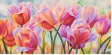 Tulips in Wonderland Stretched Canvas Print by Cynthia Ann