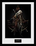 Assassins Creed -  Origins Assassin Stampa del collezionista