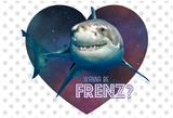 Nice Shark Poster