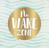 No Wake Zone Wall Sign