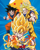 Dragonball Z 3 Gokus Prints