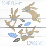 Some Bunny Loves You Wall Sign