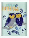 Stay Wise Little Owl Wall Sign