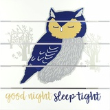 Good Night Sleep Tight Wall Sign