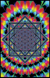Geometria sagrada Pôsters