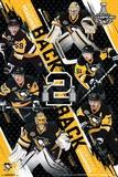 Stanley Cup 2017 - Penguins campeões Pôsters