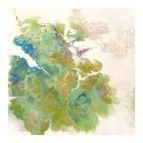 Lichen 1 Prints by Elisa Sheehan