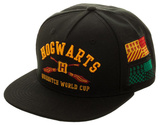 Harry Potter - Hogwarts Color Omni Snapback Hat