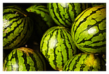 Melons Prints by Peter Morneau