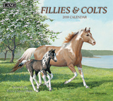 Fillies & Colts - 2018 Calendar Calendars