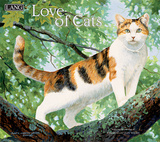 Love Of Cats - 2018 Calendar Calendars