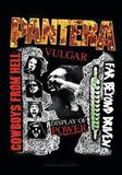Pantera - 3 Albums Posters