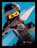 La LEGO Ninjago película - Nya Lámina de coleccionista