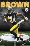 Pittsburgh Steelers - A Brown 16 Pôsteres