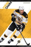 Boston Bruins - Z Chara 17 Photo
