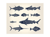 Vintage Illustration of Fish with Names in Tattoo Style over White Background Photographic Print by  hauvi
