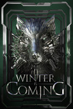 Winter Is Coming Affiches