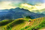 Rice Fields on Terraced of Mu Cang Chai, Yenbai, Vietnam. Vietnam Landscapes. Photographic Print by John Bill