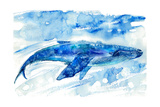 Big Blue Whale and Water.Watercolor Hand Drawn Illustration. Realistic Underwater Animal Art. Photographic Print by  Jula_Lily