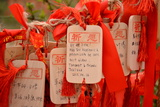 Wish Cards in a Buddhist Temple in Zhongdian , China Photographic Print by Praphat Rattanayanon