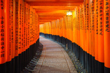 Torii Gates in Fushimi Inari Shrine, Kyoto, Japan Photographic Print by  lkunl