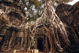 Angkor Wat Temple in Siem Reap, Cambodia Photographic Print by Andrey Bayda