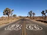 Route 66 with Joshua Trees Deep inside California's Mojave Desert. Photographic Print by  trekandshoot
