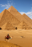 Pyramid Egypt Photographic Print by  sculpies