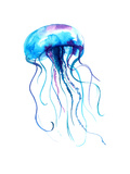 Jellyfish Watercolor Illustration. Medusa Painting Isolated on White Background, Colorful Tattoo De Photographic Print by Anna Kutukova