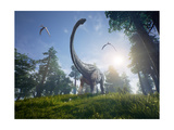 Diplodocus Browsing a Selection of Trees with Two Pteranodons Flying Overhead. Photographic Print by Herschel Hoffmeyer