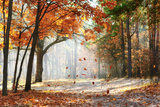 Falling Oak Leaves on the Scenic Autumn Forest Illuminated by Morning Sun Photographic Print by  Mny-Jhee