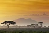 Beautiful Sunset in Kenya 03 Photographic Print by Andrzej Kubik