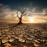 Global Warming Concept. Lonely Dead Tree under Dramatic Evening Sunset Sky at Drought Cracked Deser Photographic Print by Perfect Lazybones