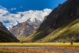 Mountain Landscape in the Andes, Peru, Cordiliera Blanca Photographic Print by Calin Tatu