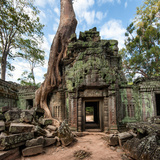 Angkor Wat Cambodia. Ta Prohm Khmer Ancient Buddhist Temple in Jungle Forest. Famous Landmark, Plac Photographic Print by Banana Republic images
