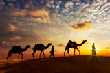 Travel Background - Two Cameleers (Camel Drivers) with Camels Silhouettes in Dunes of Desert on Sun Photographic Print by DR Travel Photo and Video