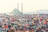View over Istanbuls Dense Residential Area with the Fatih Mosque in Sunlight Photographic Print by Stefan Holm
