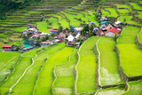Rice Terraces in the Philippines. the Village is in a Valley among the Rice Terraces. Rice Cultivat Photographic Print by  Frolova_Elena