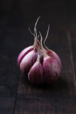 Garlic on Vintage Wooden Table Photographic Print by Mateusz Gzik