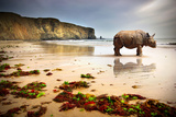 Surreal Scene of a Big Rhinoceros in an Empty Beach Photographic Print by Carlos Caetano