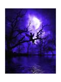 Celestial Night Poster por Julie Fain