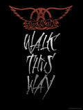 Aerosmith - Walk This Way Print