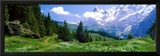 Alpine Scene Near Murren Switzerland Framed Photographic Print by  Panoramic Images